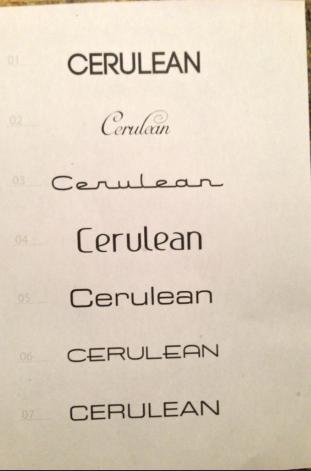 SV Cerulean logo final list