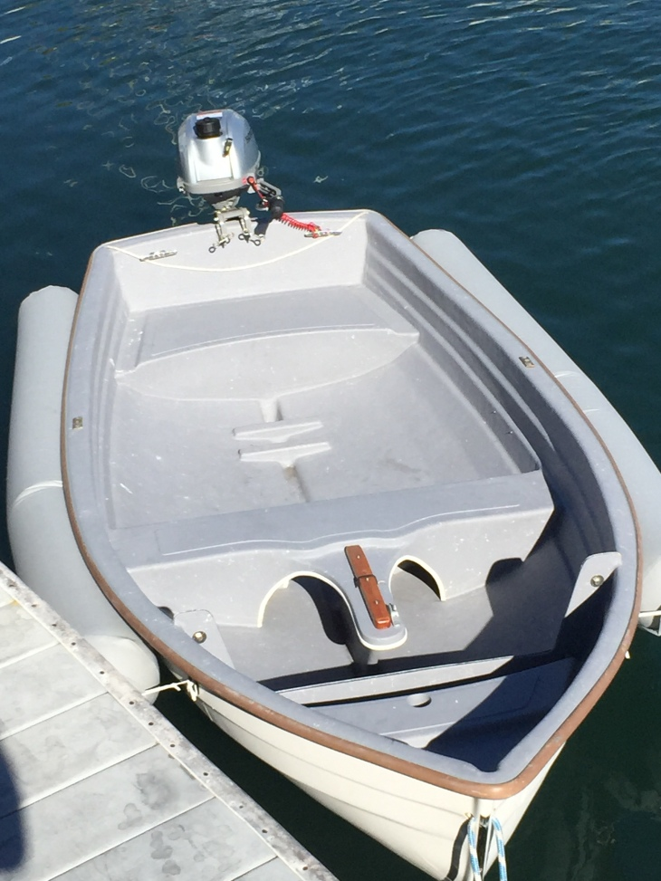 Navigator with Honda Outboard + Dinghy Dogs Installed